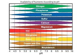 Ph Of Vegetables Chart Soil Ph For Vegetables Villastowingservice Com