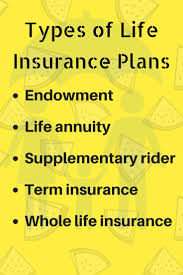 find diffe types of life insurance plans in malaysia