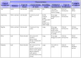 1 Characteristics And Classification Of Organisms Ms