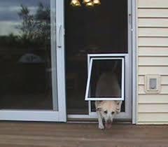 sliding screen door with dog door menards sliding screen door with dog door diy patio screen