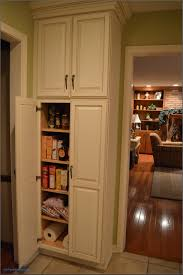 Tall Pantry Cabinet Ikea With Kitchen Wall There Are Two Cabinets At