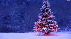 Collection Free Wallpaper Christmas Tree Pictures Home Design Ideas Photo  Album
