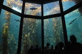 aquarium size and volume edit