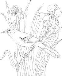 Free Printable Coloring Page. | bird | Pinterest | Free printable ...