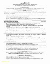 Web Analyst Resume Sample Web Services Business Analyst Resume Resumes Project 51