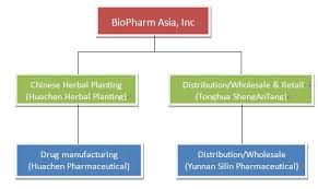 Organizational Chart Of A Drugstore Biopharm Asia Inc 10k Annual Reports 10q Sec Filings