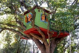how to build a treehouse. How To Build A Treehouse