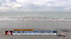 High To Medium Levels Of Red Tide In Lee County
