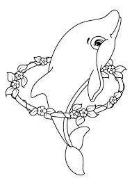 30 Disegni Di Delfini Da Colorare Varie Delfini Disegni E
