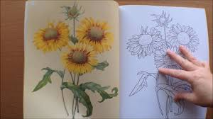 colouring flowers colouring book with pictures by redoute
