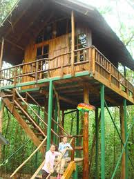 Best 25 Building A Treehouse Ideas On Pinterest  Kids Tree Forts How To Build A Treehouse For Adults