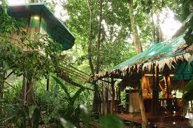 Treehouse In MonteverdeTreehouse Monteverde Costa Rica
