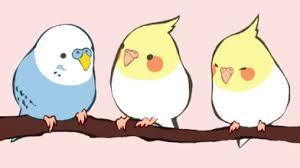 cute bird drawing tumblr. Exellent Drawing Go Bird Or Home With Cute Bird Drawing Tumblr