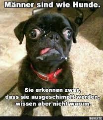 Männer Sind Wie Hunde Lustige Bilder Sprüche Witze Echt Lustig