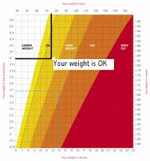Ideal Weight Chart In Stones Height Weight Chart