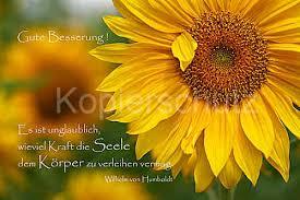 Es Ist Unglaublich Gute Besserung Sonnenblumen