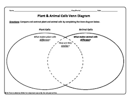 Comparing Plant And Animal Cells Venn Diagram Answers Plant And Animal Cell Venn Diagram