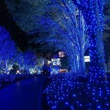 Blue White Outdoor Christmas Lights 100 Led 10m Outdoor Lighting Party Supplies String Fairy