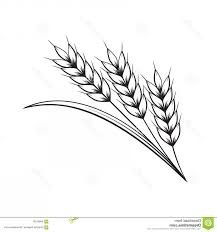 Stock Illustration Graphic Wheat Vector Illustration White