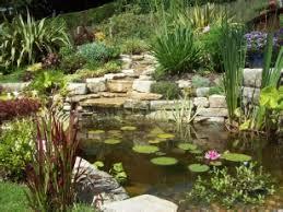 Small Picture Garden Pond Design Koi Pond Design Wildlife Pond Design Water