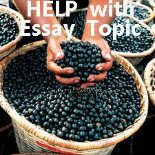 choosing an essay topic easy interesting topics here essay topic help