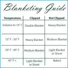 horse blanket size chart inspirational you are here home size charts weatherbeeta horse blanket