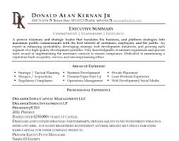 Summary Of Qualifications Resume Beauteous Summary On A Resume Summary For Resumes Executive Summary Resume