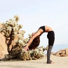 like a tree you have to find your roots and then you can bend in the wind angela farmer aubrymarie aloyoga thanks ig yogainspiration