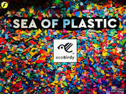 Image result for sea of plastics ecobirdy