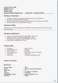 Essays Writing Services Kvavik Camping Sample Resume Nursery