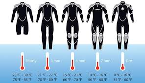 Infographic To Help You To Choose Which Wetsuit To Bring In