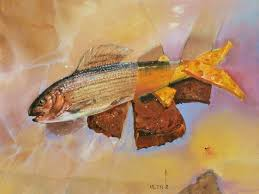 Более лучших идей на тему Бутерброд с рыбой на  Бутерброд с рыбой хариус