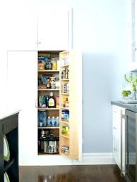 wall pantry cabinet ideas built in pantry cabinet best wall pantry ideas on kitchen pantry built wall pantry cabinet ideas