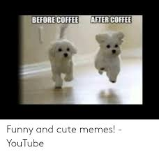 Their survival highly depends on it. Before Coffee After Coffee Funny And Cute Memes Youtube Cute Meme On Me Me