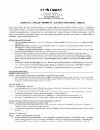 Adjunct Professor Resume Sample Luxury Architect Resume Samples Best