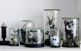 Decoration: Interesting Room With Creepy Halloween Decorations Of Plants  Also Ghost On Visible Glass