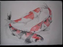 realistic koi fish drawing. Brilliant Drawing Realistic Koi Fish Drawings  Google Search Throughout Realistic Koi Fish Drawing Pinterest