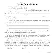 blank power of attorney power of attorney document template special power attorney sample