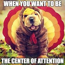 Thanksgiving is a time to come together with family and friends, but it's also about laughter. Happy Thanksgiving Memes Gifs Imgflip