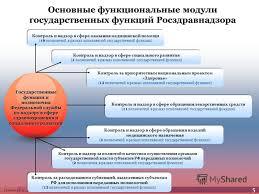 Презентация на тему Тельнова Е А Росздравнадзор О результатах  6 Тельнова Е А Росздравнадзор Контроль и надзор