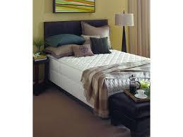 Sealy Firm Mattress Murphy Beds Mattresses Wall Bed Factory