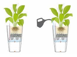 Brilliant Lechuza Self Watering Planter Flower Pot Uk Instruction Sub  Irrigation System Indium Plant Rondo