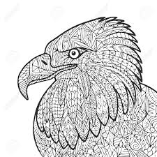 ベクトル大人の塗り絵の手描きのイーグルの鳥のイラスト