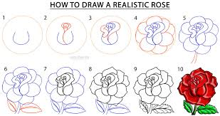 Small Picture How To Draw a Realistic Rose Step by Step Pictures Cool2bKids