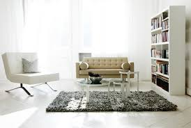 Living Room Bookshelf Interior White Style Living Room Bookshelf Fur Carpet Sofa Chair