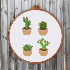 modern cactus ritacuna
