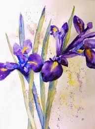 laura moore watercolour art iris flowers in watercolour