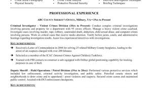 Police Officer Resume Sample Objective Free Resume Templates