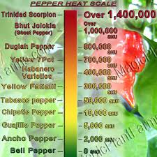 Ghost Chili Scoville Chart Ghost Chili Pepper Interesting Facts Magic Plant Farms