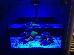 Prime Hd Light Im 25 Gallon Lagoon Lighting Lighting Forum Nano Reef